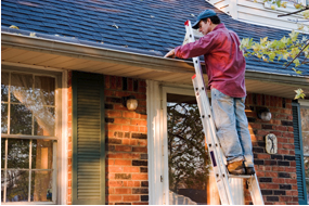 pre-sale-inspection-ladder-and-gutters